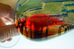 Lien vers Les étapes de dégustation d'un vin